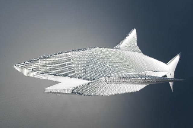 FLODEAU-Francis Chabloz-Shark-2